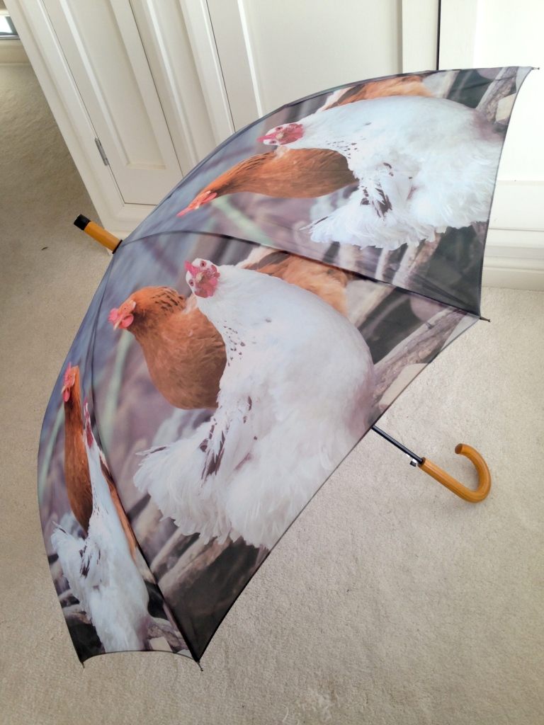 Chickens Hens Umbrella