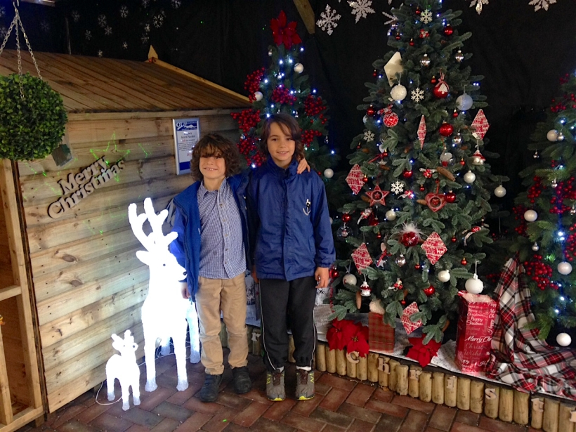 Christmas at the garden centre