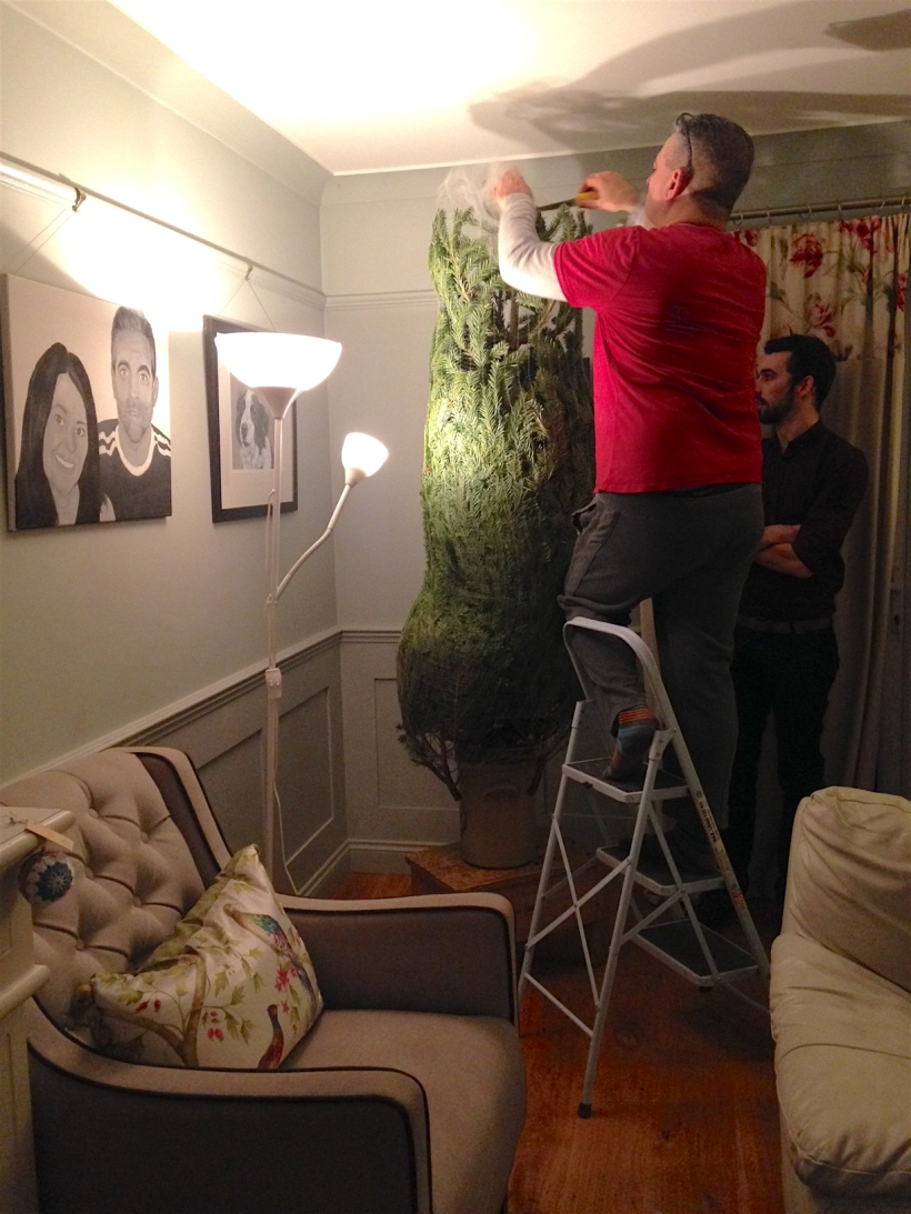 Putting up the tree